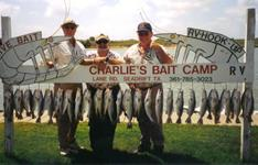 Baker Paint & Body Group - Andy & friends with limits of Trout